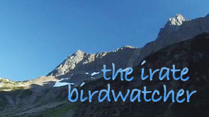 The Irate Birdwatcher