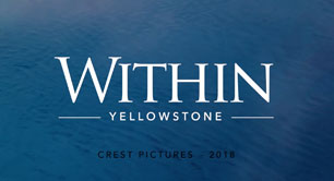 Within Yellowstone